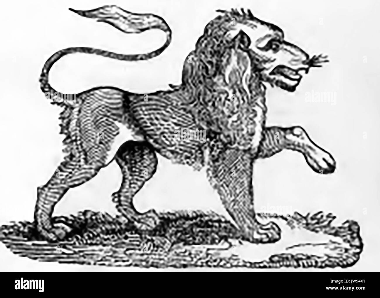 Early English woodcut showing the British Lion - Stock Image