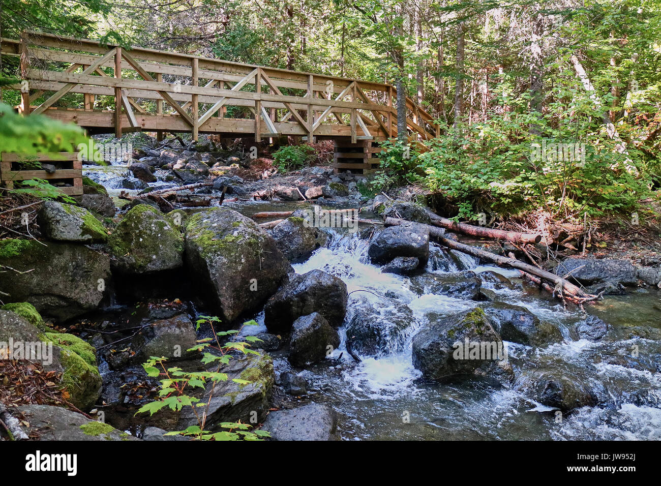 America, Canada, Québec, Gaspésie, Carleton area, on the way until Mont St-Joseph, Grand Saut falls area - Stock Image