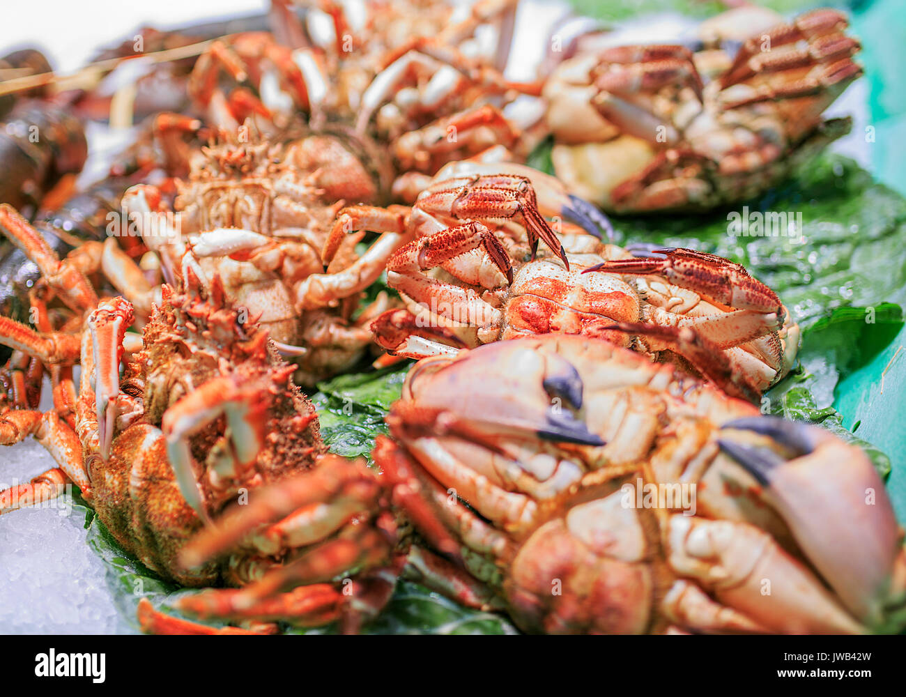 Fresh seafood in a food market of Barcelona - Stock Image
