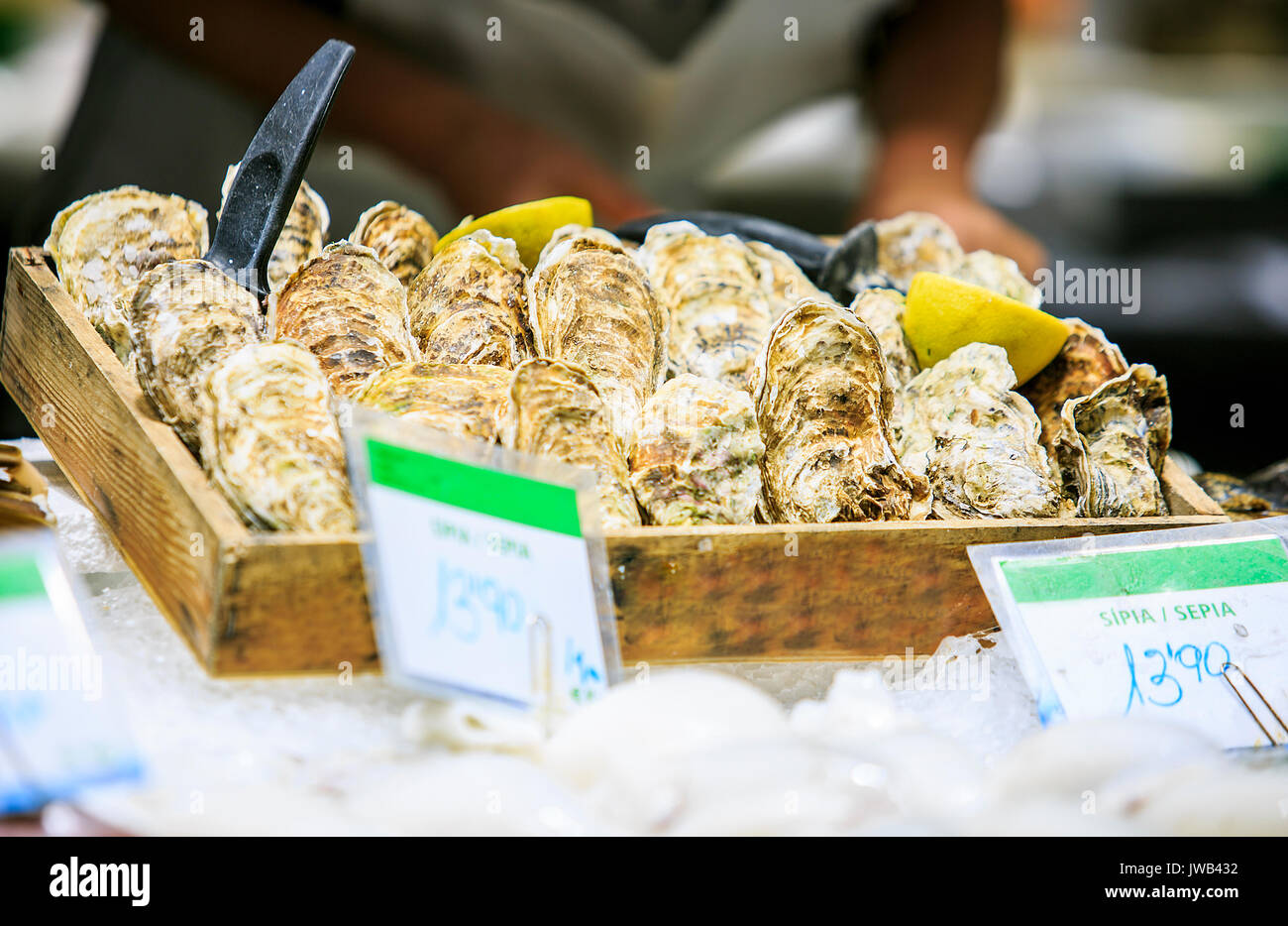 Fresh oysters in a food market of Barcelona - Stock Image