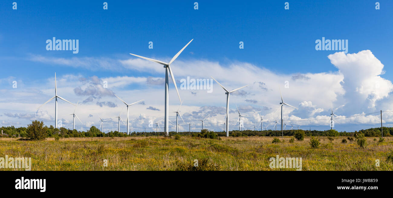 Windmills wind turbines for electric power production in green field - Stock Image