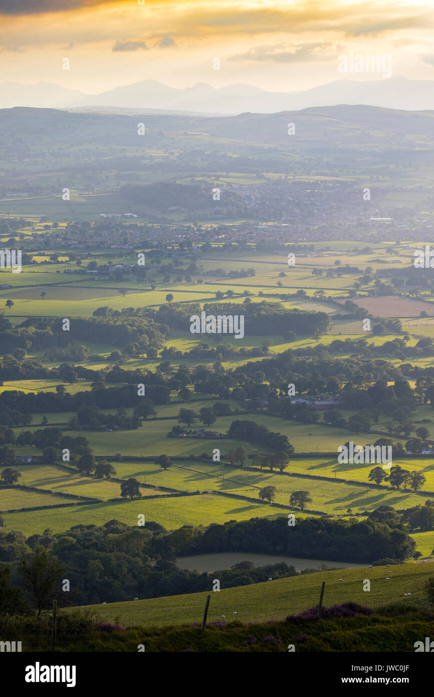 A summer evening across the beautiful and picturesque landscape of the Vale of Clwyd towards the town of Denbigh with Snowdonia National Park visible - Stock Image