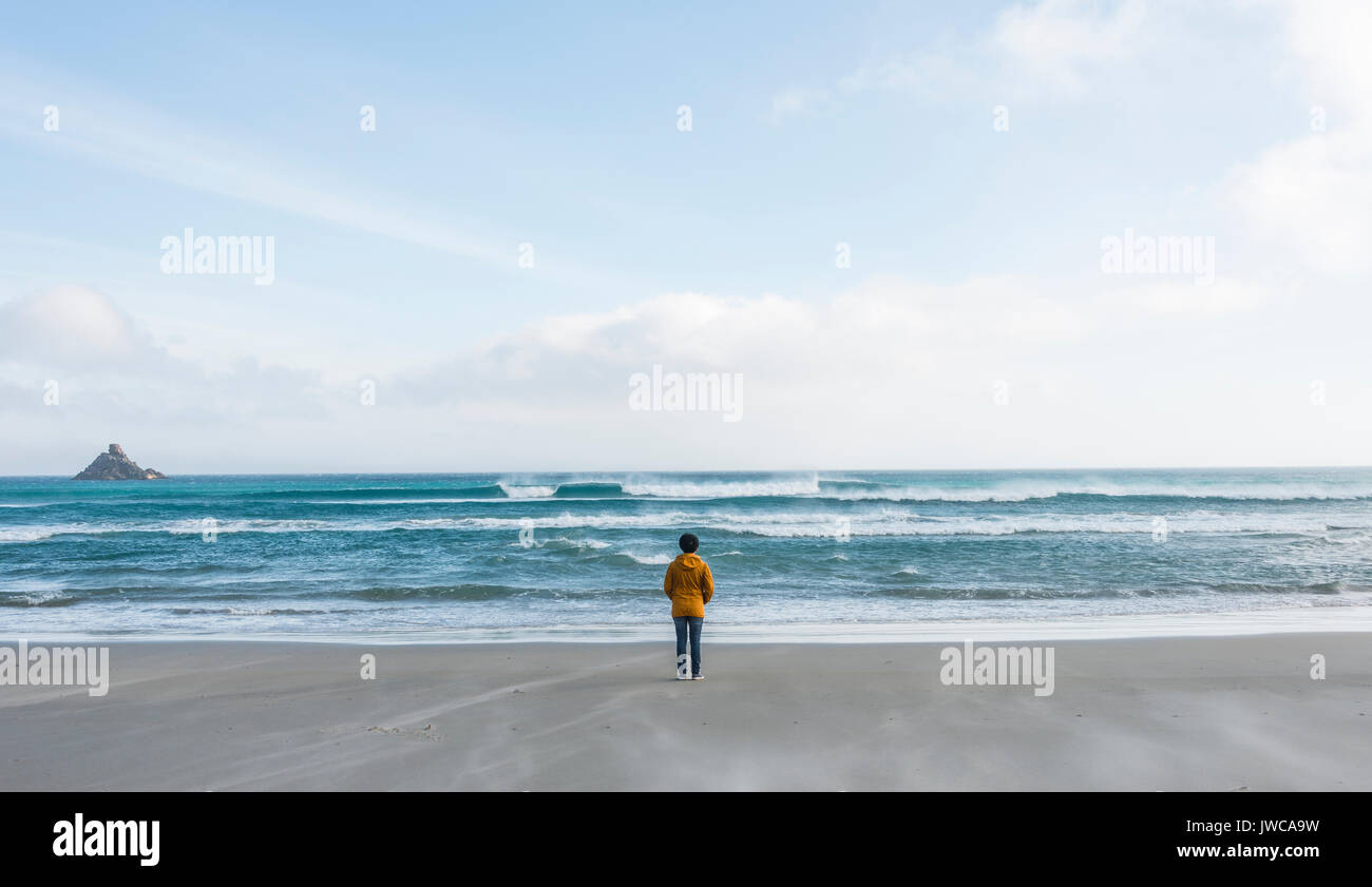 Lonely person standing by the sea, looking out into the distance, Sandfly Bay, Dunedin, Otago, South Island, New Zealand - Stock Image