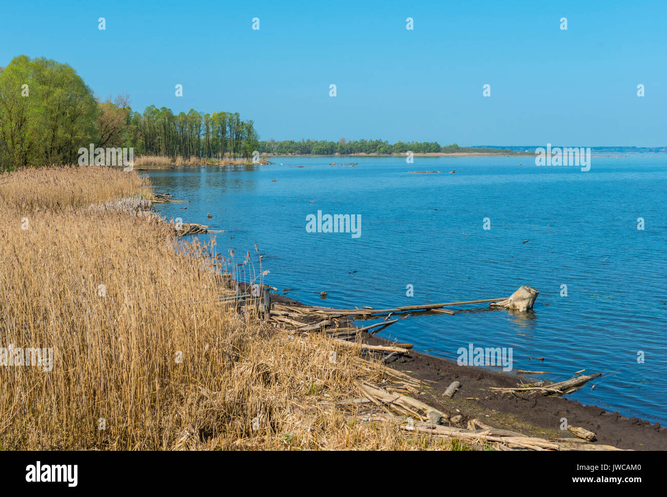 Mmouth of the Tyrolean Ache or Tyroler Achen, Chiemsee, Upper Bavaria, Bavaria, Germany - Stock Image