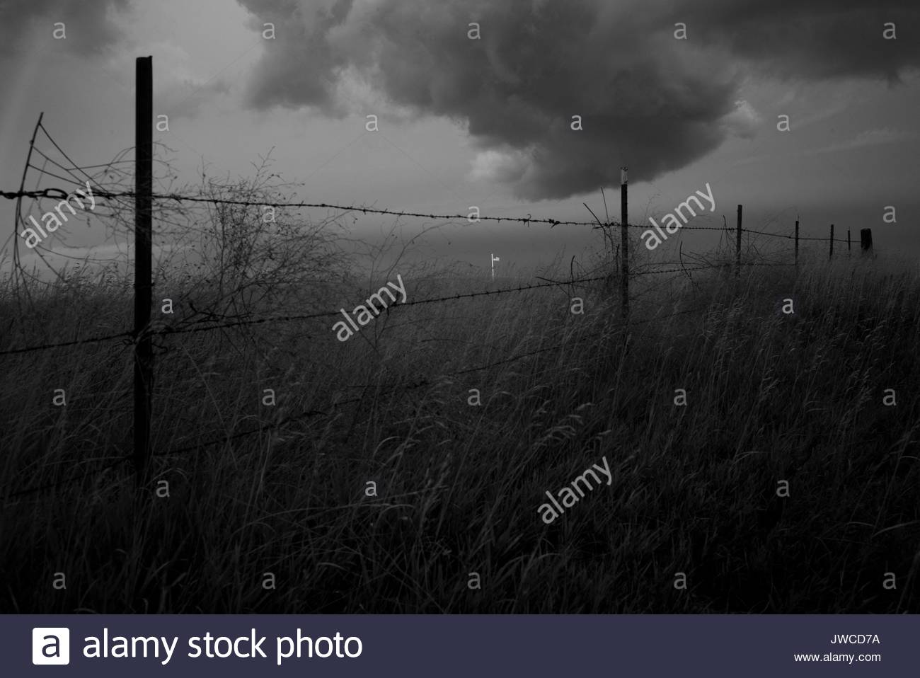 An United States flag is illuminated as a storm breaks over a pasture adjacent to the Lakota Community Homes housing Stock Photo