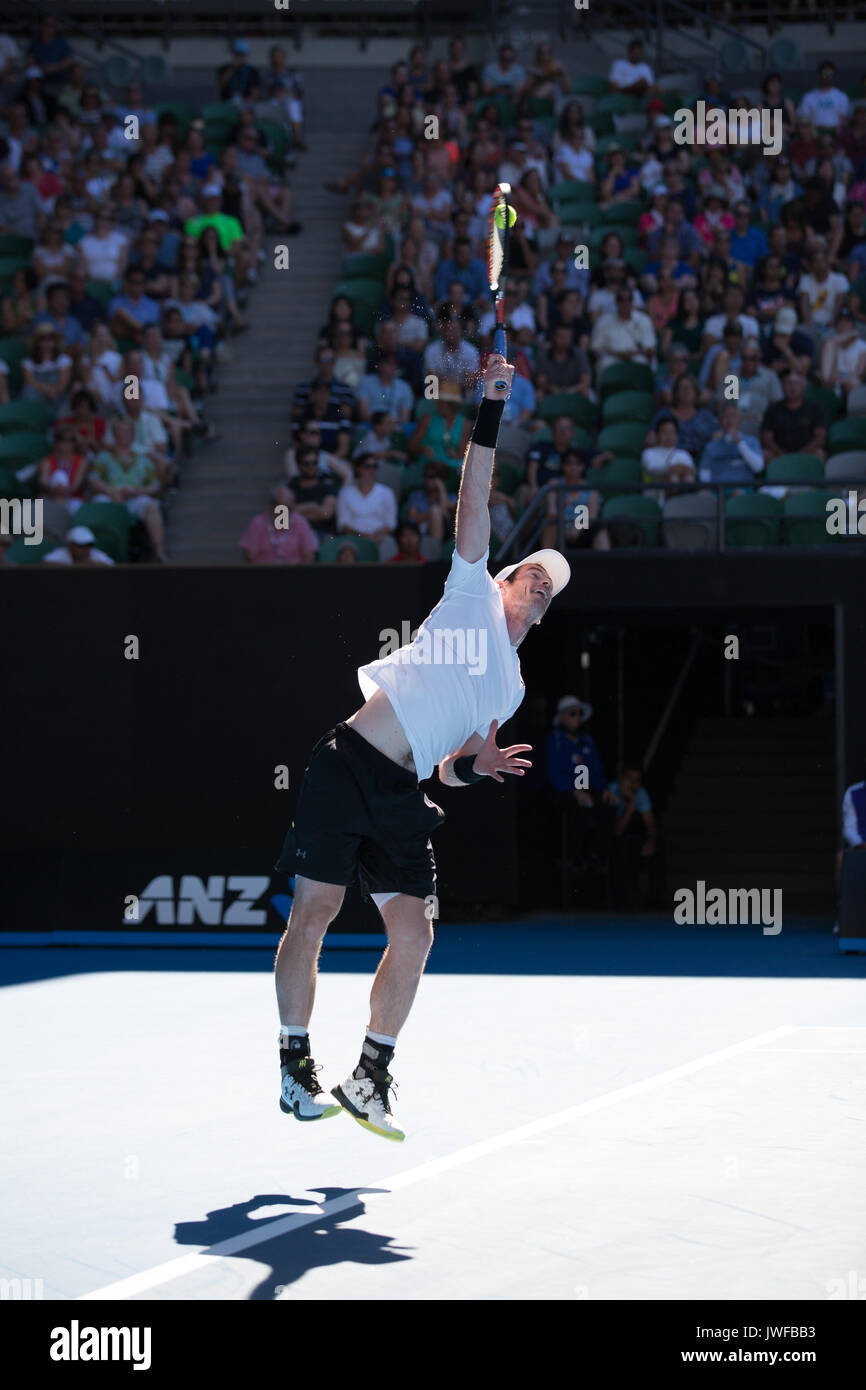 ANDY MURRAY (GBR) in action at the Australian Open - Stock Image