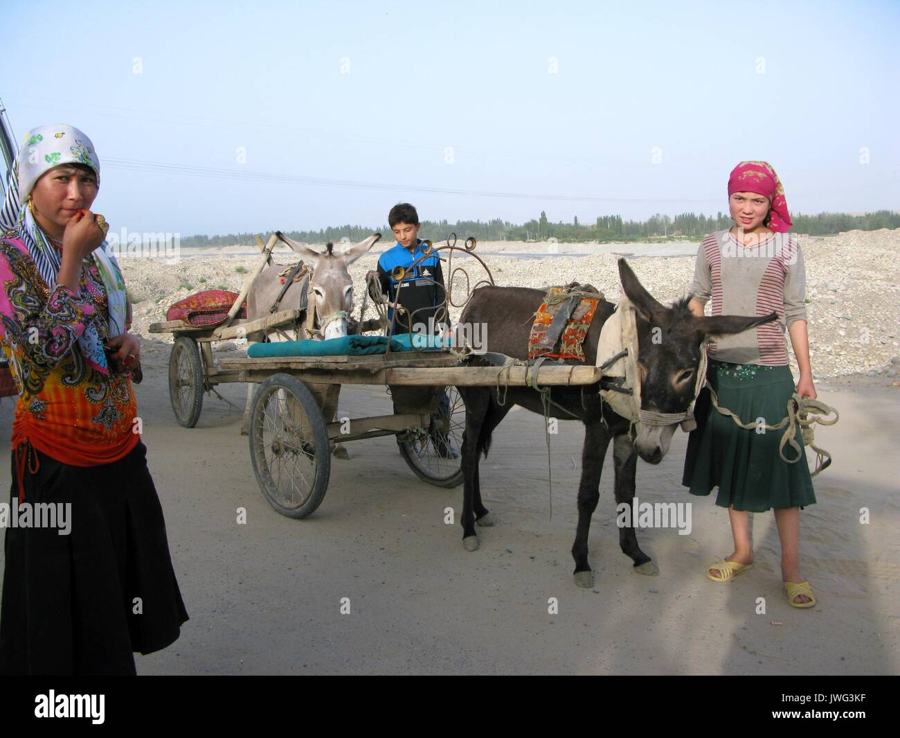 Donkey carts are available to hire to take tourists to the Melikawat Ruins - Stock Image
