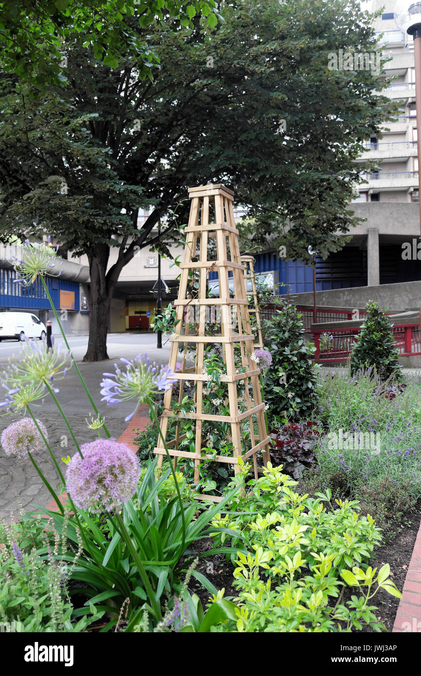 Free Standing Trellis For Climbing Plants A Small City Of London Garden  Outside Offices In Central