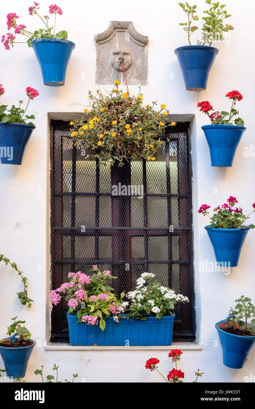 Spain : The Patios of Cordoba come into their own during the Festival of the Courtyards , when all the owners participating in the contest - Stock Image