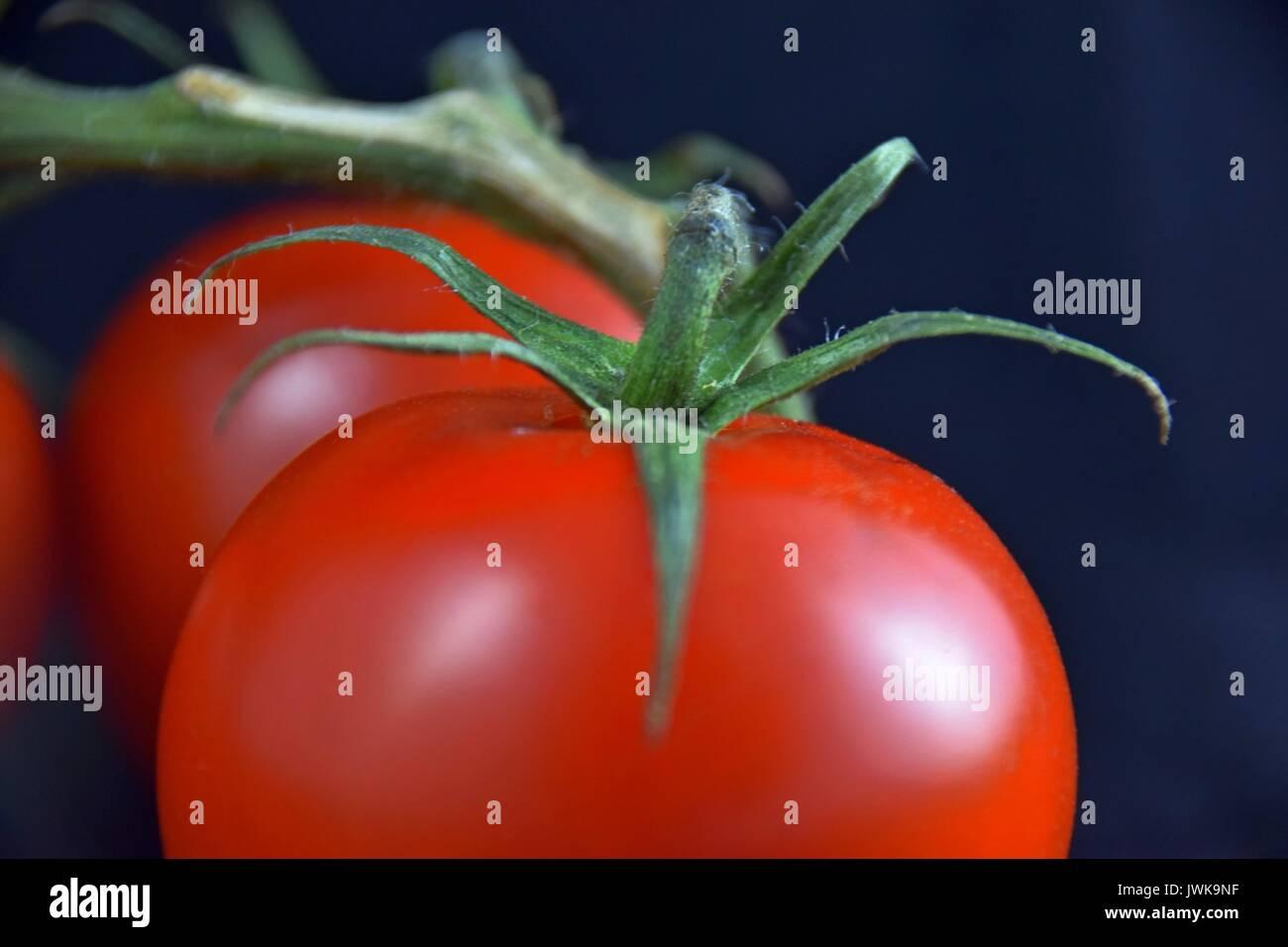 Ripe tomatoes, tomato, reife Tomaten, Solanum lycopersicum - Stock Image