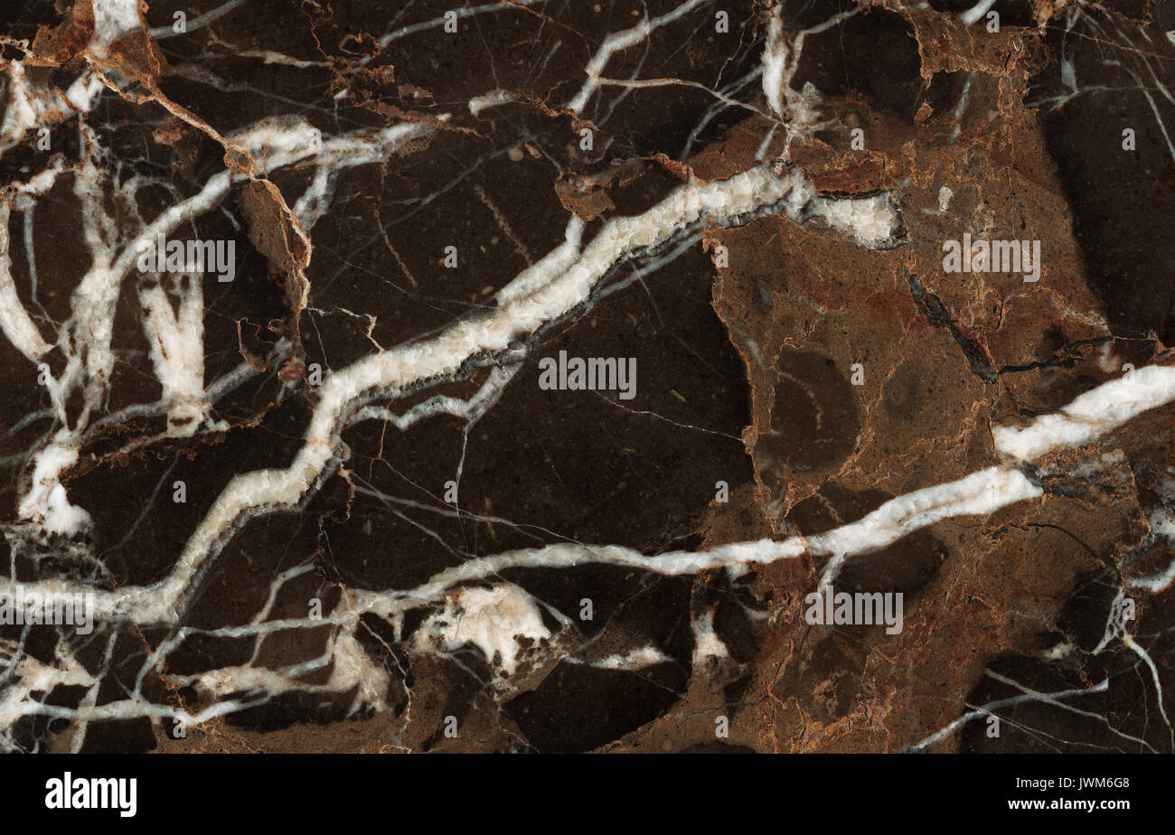 Beautiful Brown Marble Tile With White Veins Stock Photo Alamy
