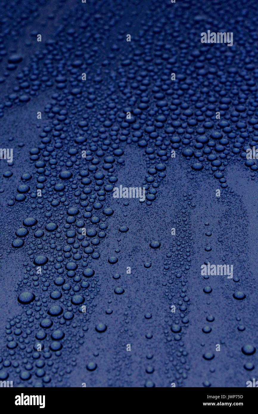 rain drops on classic car hood - Stock Image