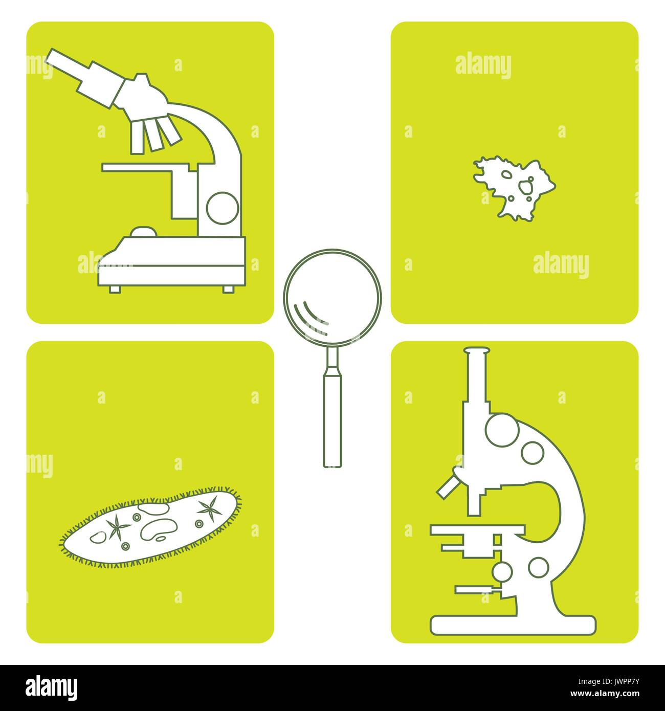 Stylized icons of microscopes, magnifier, amoeba, ciliate-slipper. Magnifying device sign. Laboratory equipment symbol. - Stock Vector