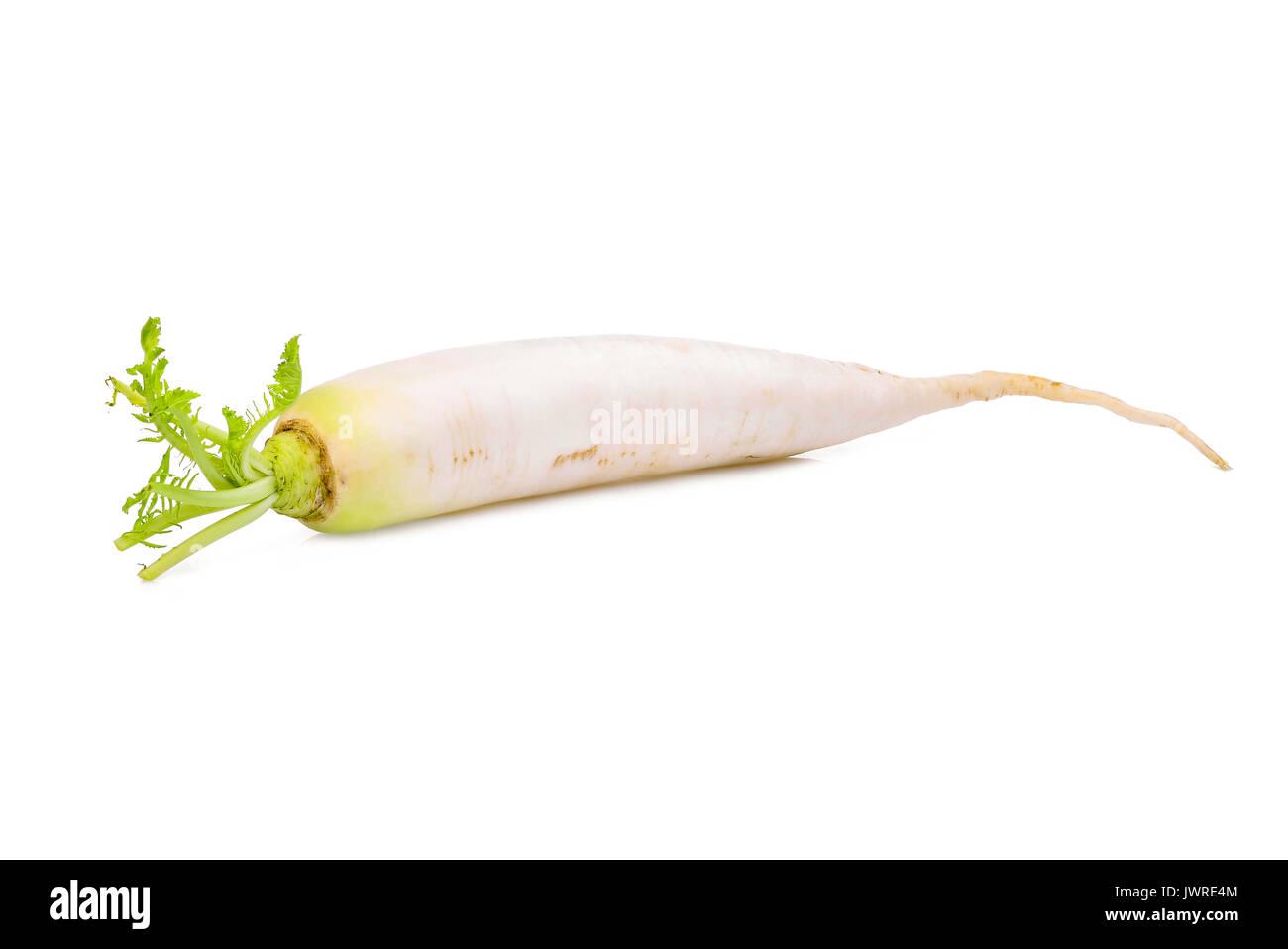 single fresh daikon radish isolated on the white background - Stock Image