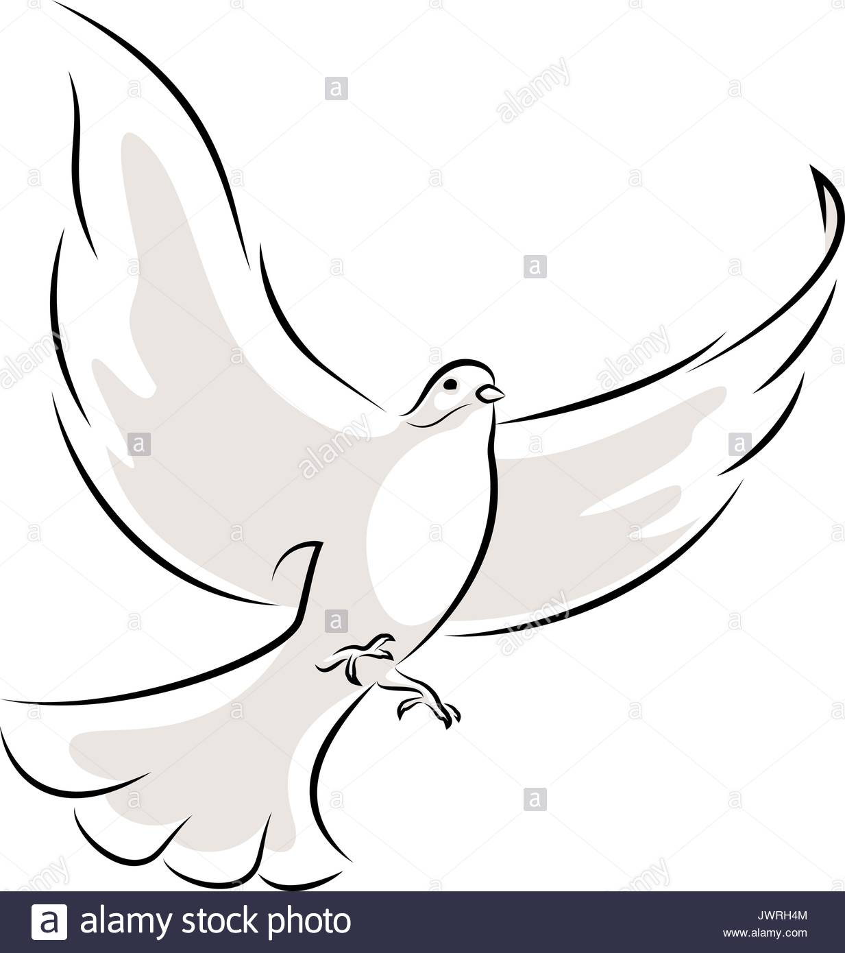 White Dove Flying Symbol Love Stock Photos White Dove Flying