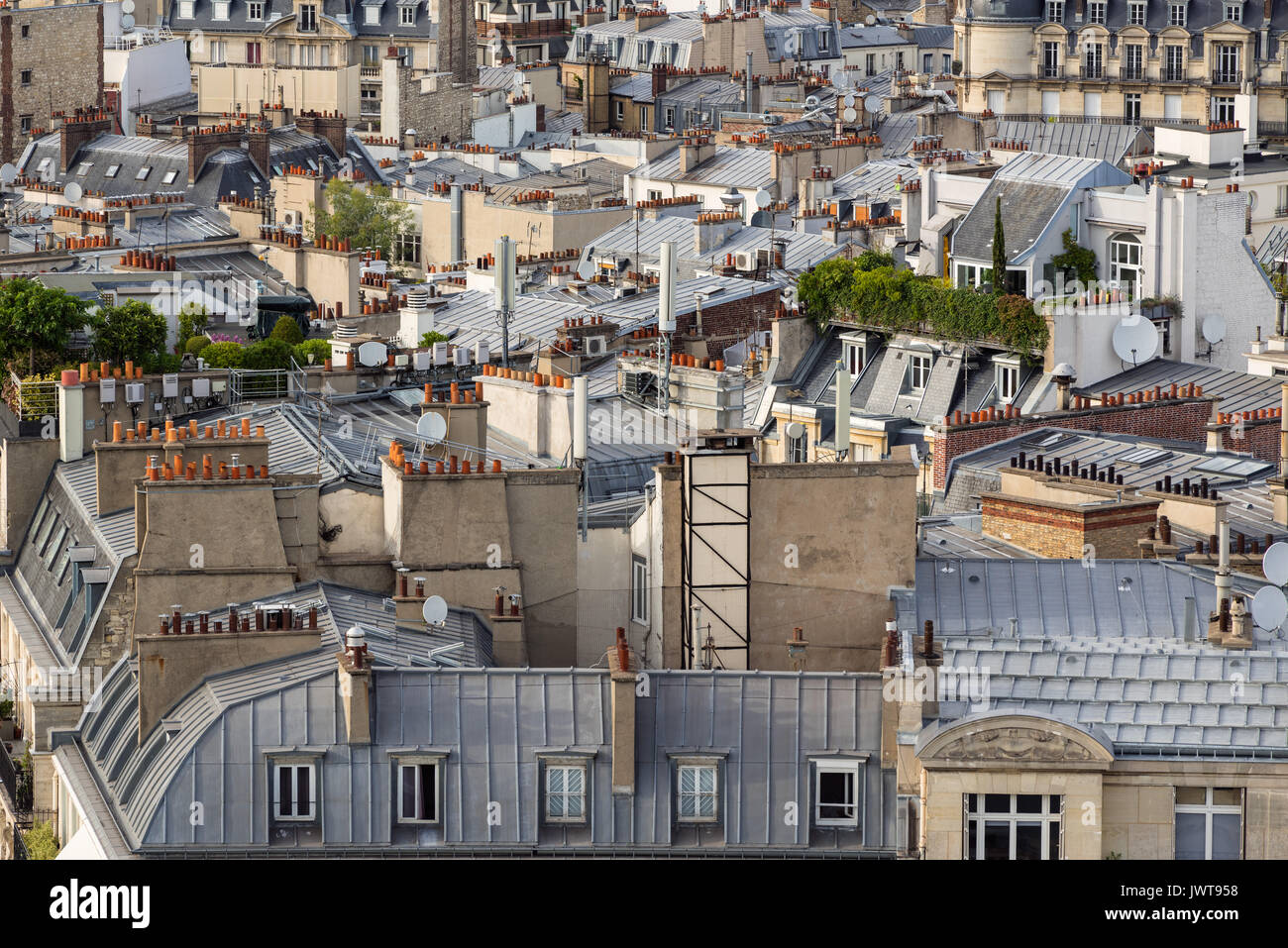 Paris rooftops in summer with roof gardens and mansard roofs. 17th Arrondissement of Paris, France - Stock Image