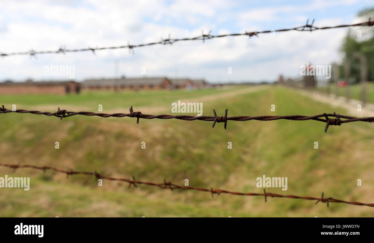 Poland Barbed Wire Fence Auschwitz Gas Chambers Holocaust Stock ...