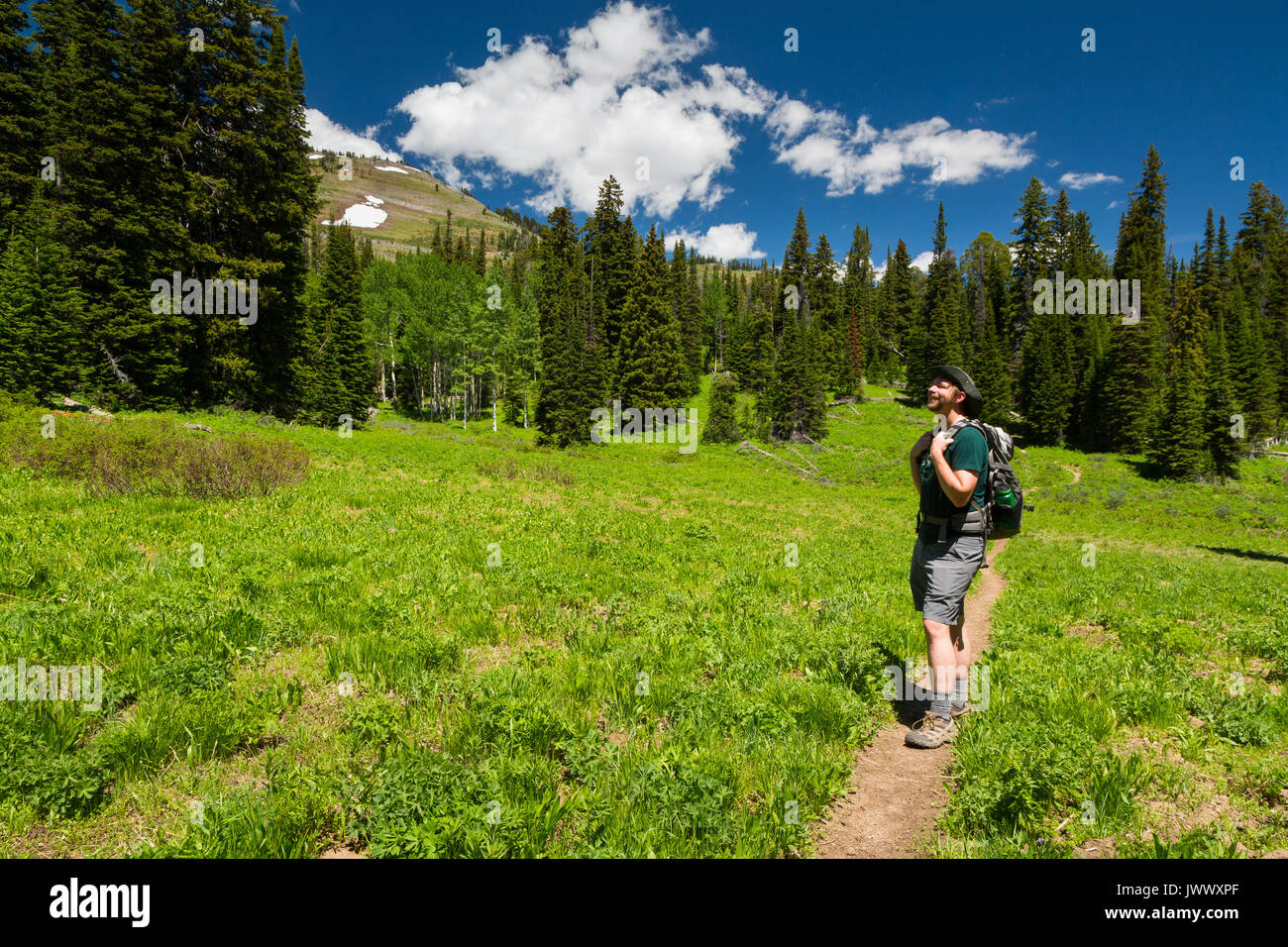 A hiker pausing to admire the scenery below southern Teton Mountains along the Phillips Pass Trail, also doubling as the Teton Crest Trail. Bridger-Te - Stock Image