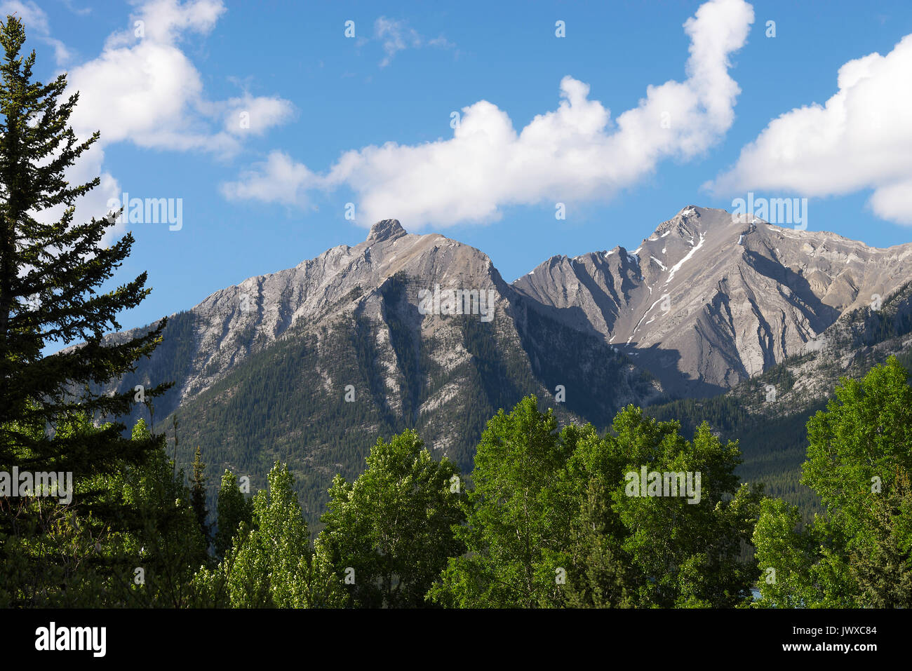 Rocky Mountain Range in Early Summer near Canmore with Deciduous Woodland and Coniferous Pine Forest Banff National Park Alberta Canada - Stock Image