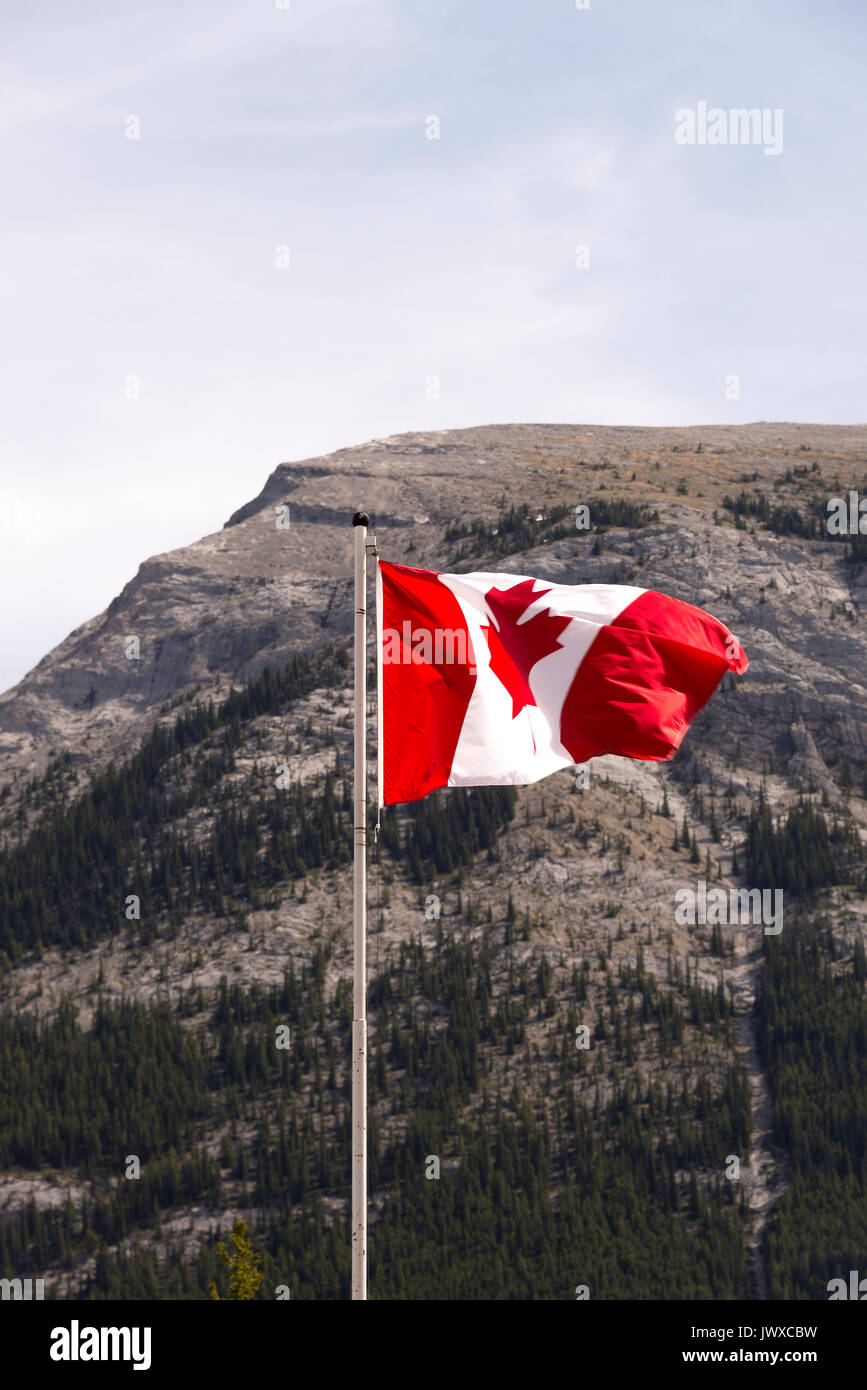 The Canadian Maple Leaf Flag Flies High From a Flagpole Above Banff in Alberta Canada - Stock Image