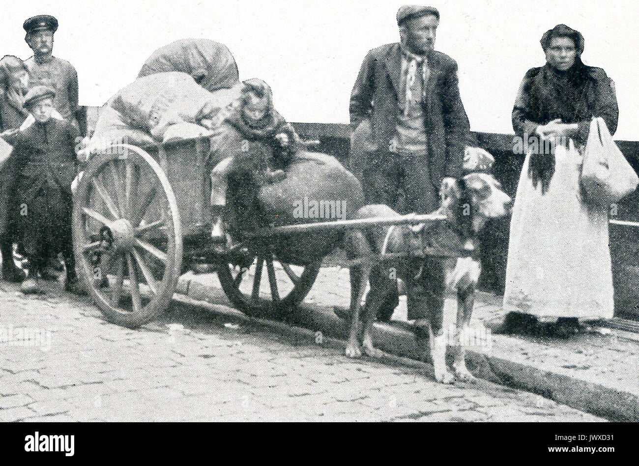 The caption for this photo from the early days of World War I reads: All that was left from the disaster. This dog cart and its contents were all that a once prosperous family saved from ruin. The location is not mentioned, but it is on the continent - somewhere by the French/German border. - Stock Image