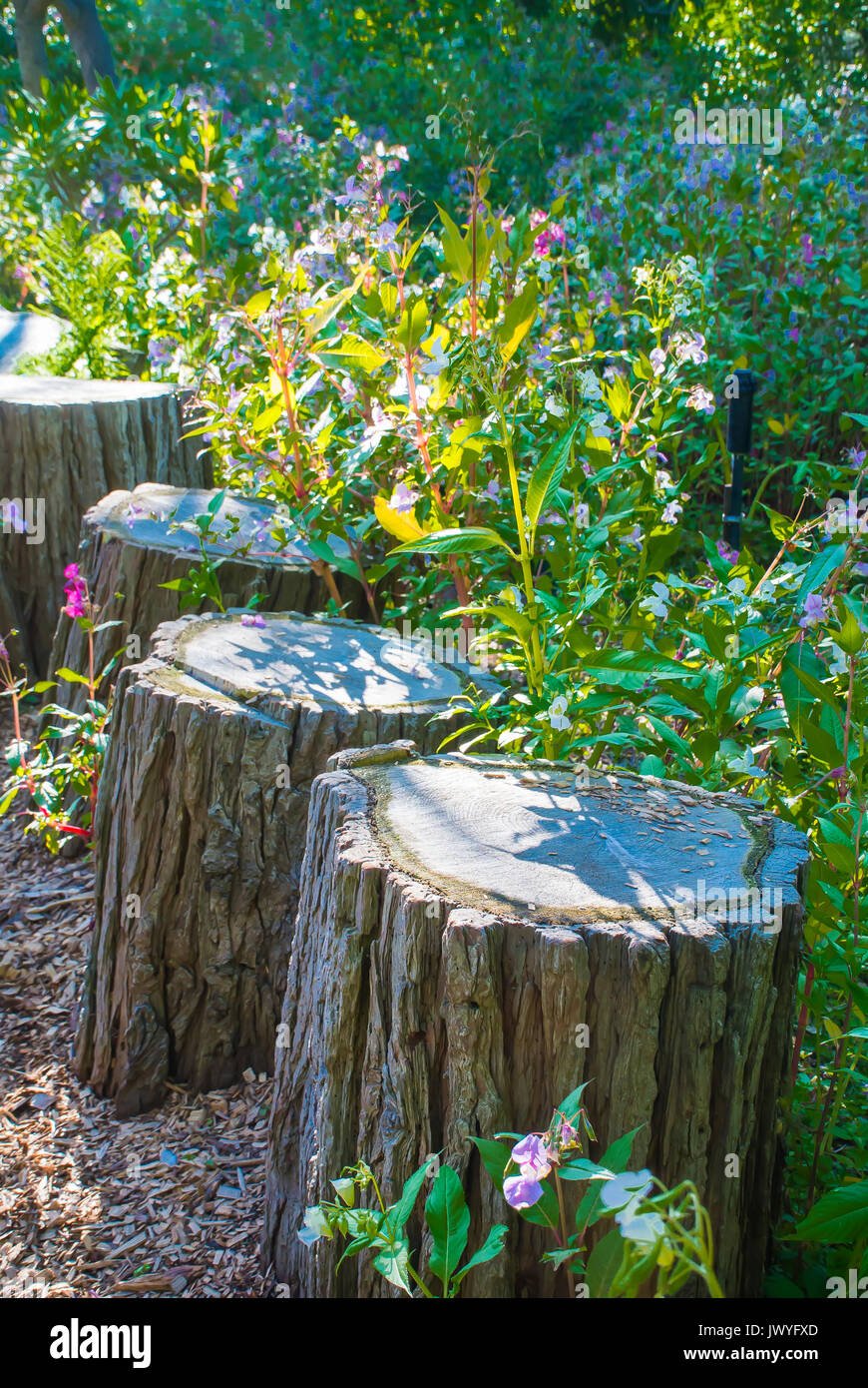 Shade Garden Seating Stock Photos Amp Shade Garden Seating