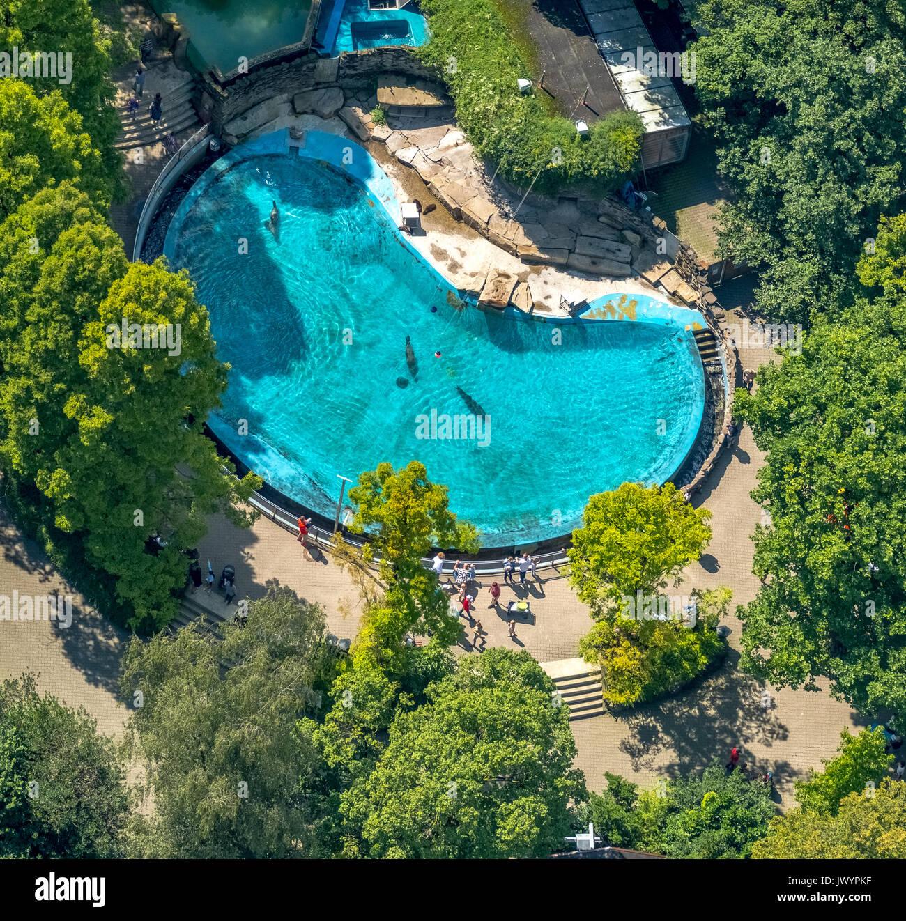 pool duisburg
