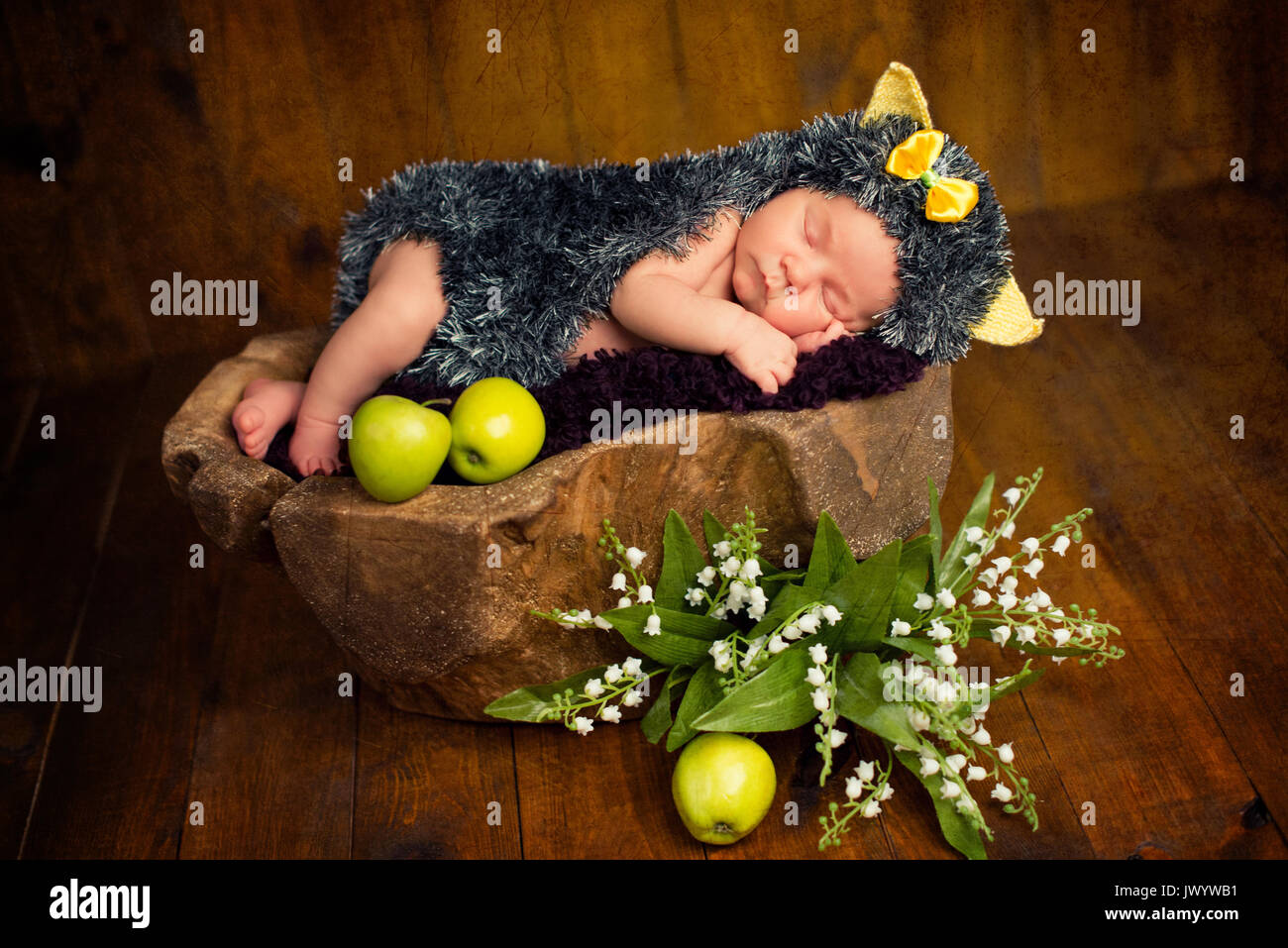 Funny newborn little baby girl in a costume of hedgehog sleeping sweetly on the stump - Stock Image