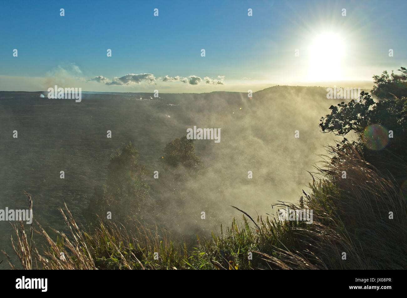Steam vents, and steaming bluff on the rim of Kilauea Volcano, Volcano national park - Stock Image