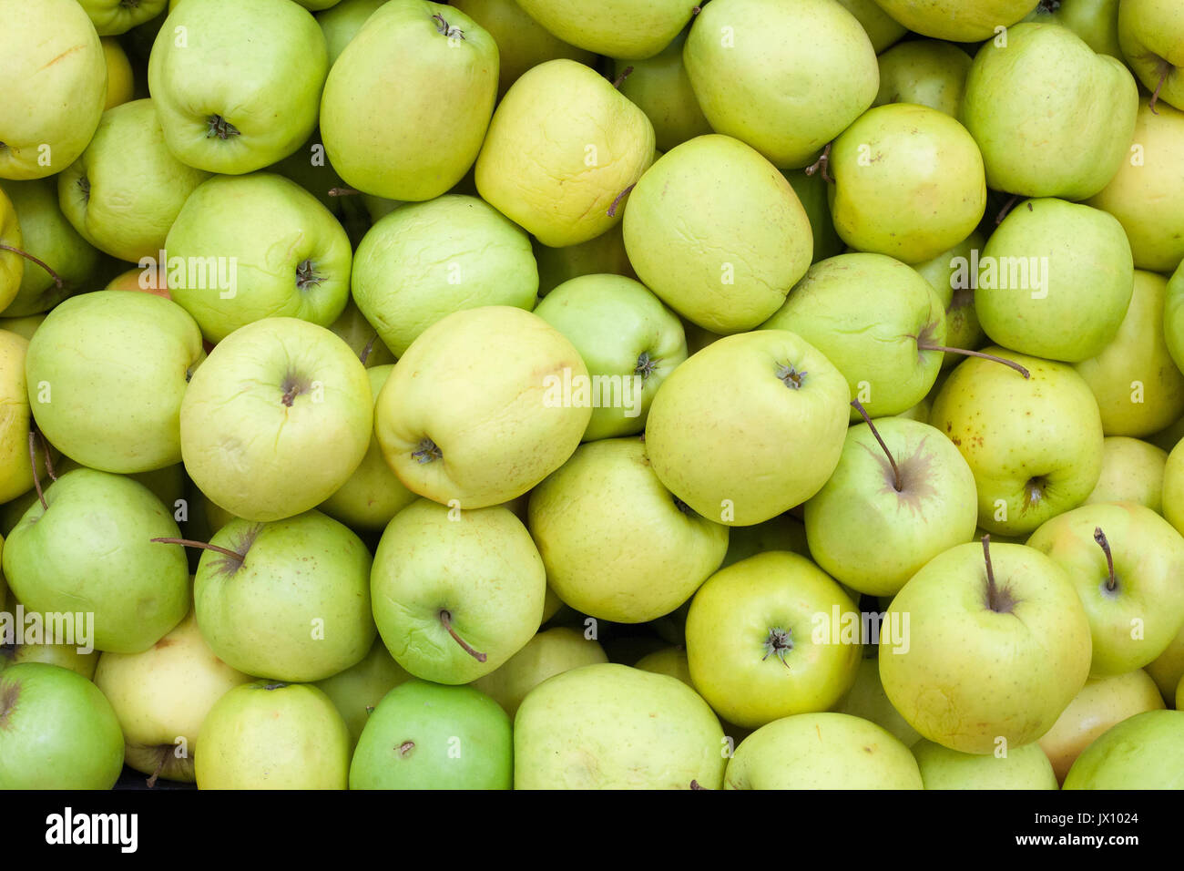 Apples background Green apple Raw fruit and vegetable backgrounds overhead perspective - Stock Image