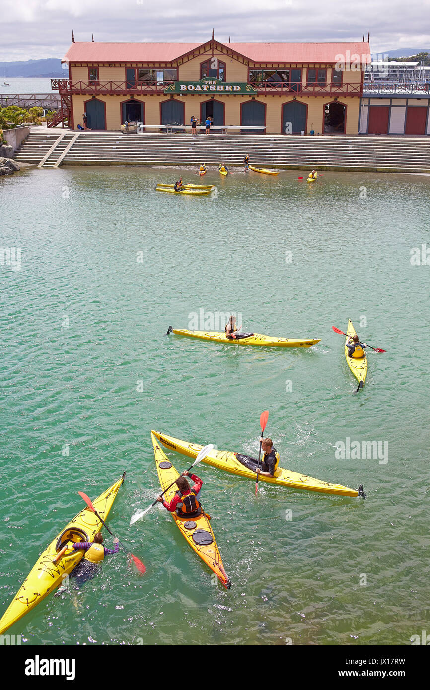 wellington waterfront pond with kayaks with boatshed in background - Stock Image