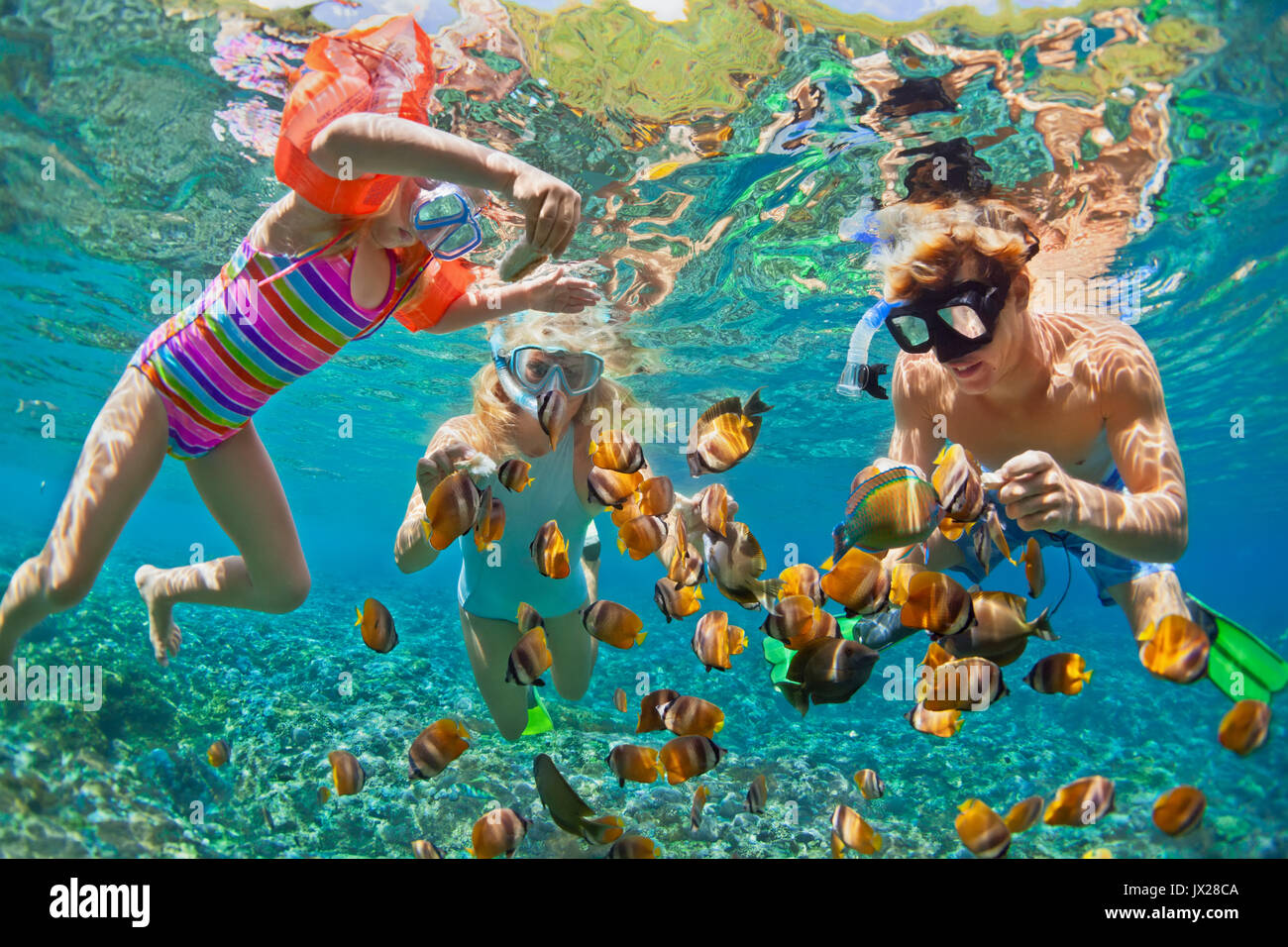 Happy family - father, mother, child in snorkeling mask dive underwater with fishes in coral reef sea pool. Travel - Stock Image