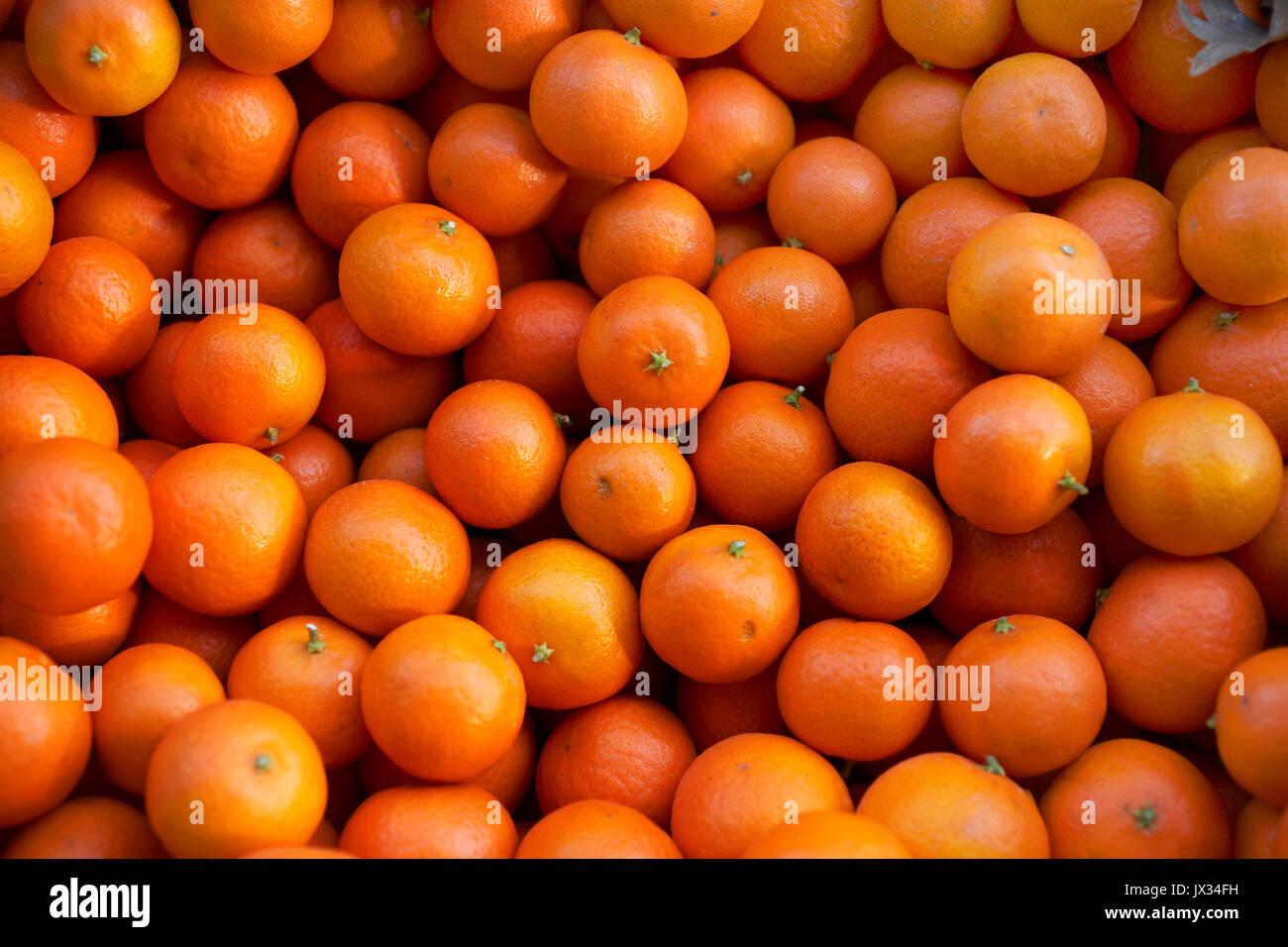 full frame of mandarin citrus fruit - Stock Image