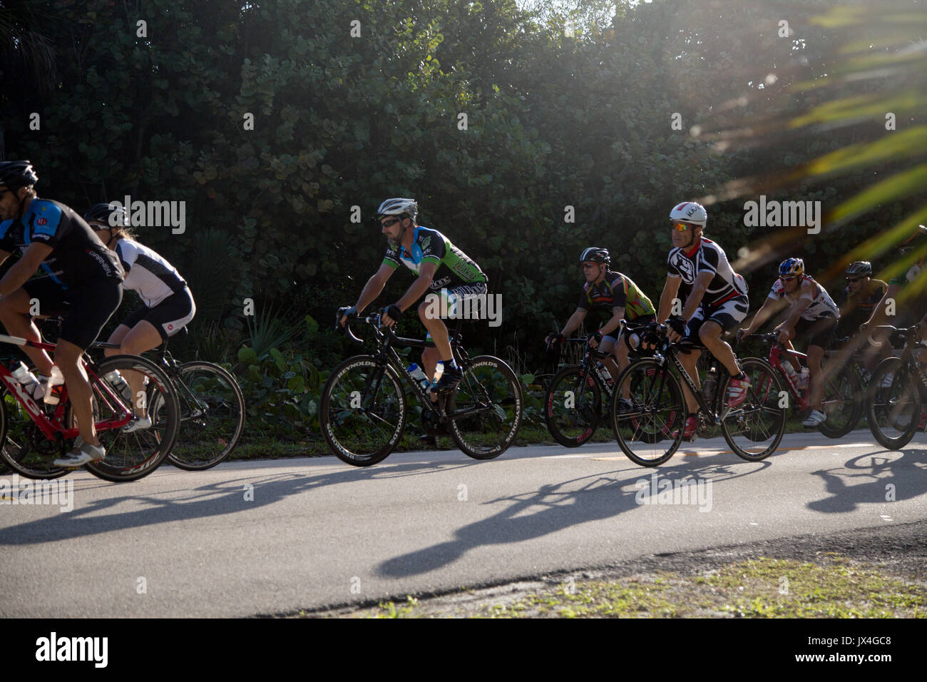 Cyclists riding in a group. - Stock Image