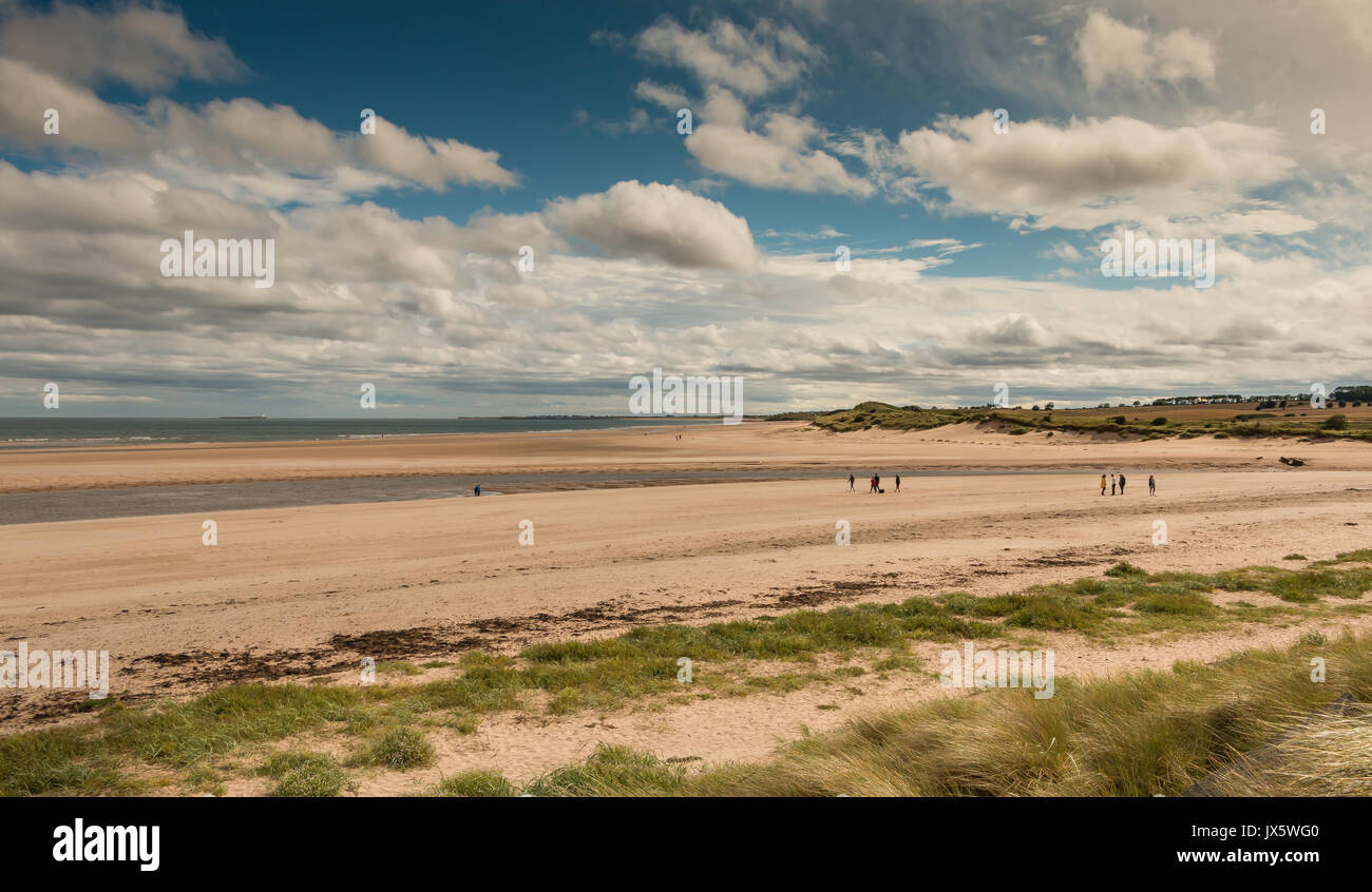 Alnmouth Beach and Estuary, Northumberland Coast, UK with copy space - Stock Image