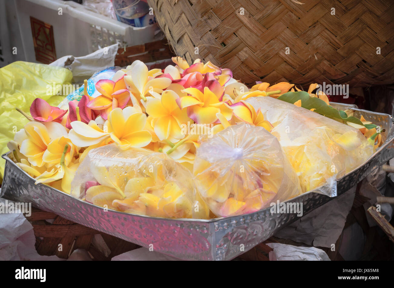 Flowers for Traditional Balinese offering, Frangipani or Plumeria, for sale at the Ubud Traditional Market, Ubud, Bali. - Stock Image
