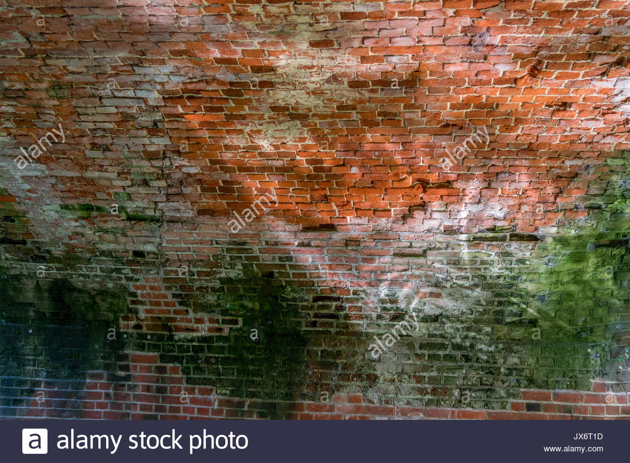Dappled sunlight reflects from the walls of a tunnel on the Basingstoke Canal in Hampshire UK. - Stock Image