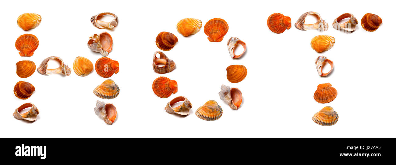 HOT text composed of seashells. Isolated on white background. - Stock Image
