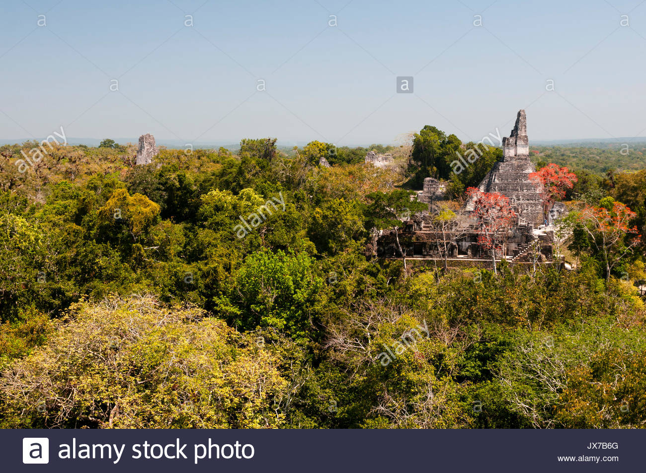 Temple I above the treetops in the jungle. - Stock Image
