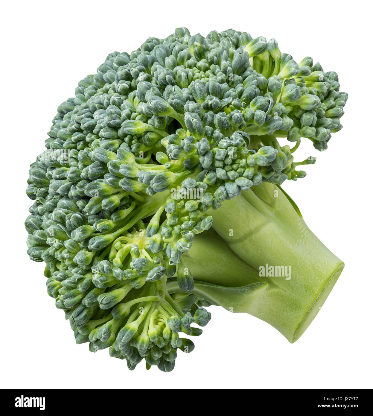 Cabbage broccoli isolated on white background with clipping path Stock Photo