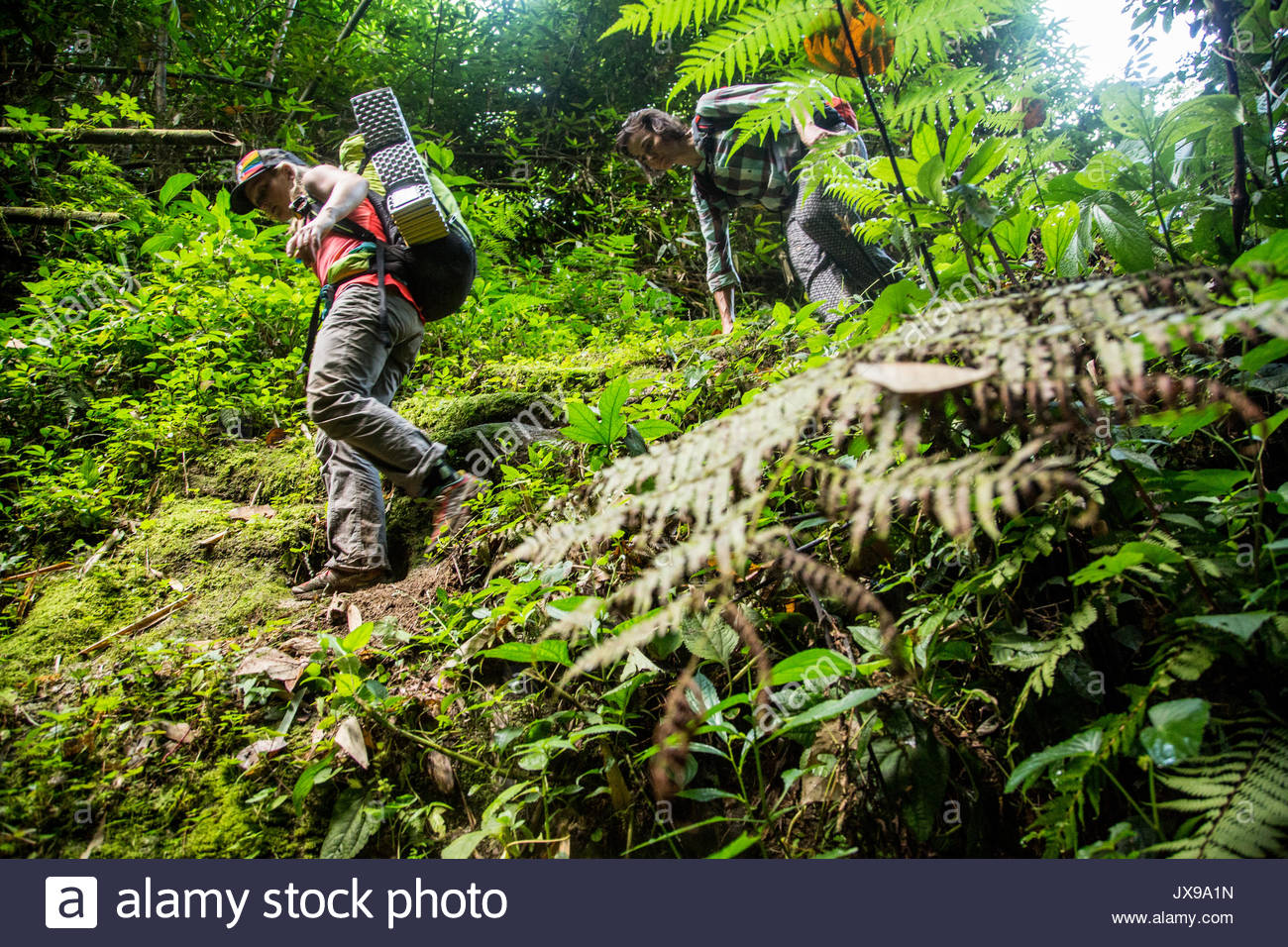 Expedition members hike on a trail towards basecamp during trek towards the border of Myanmar and Tibet. - Stock Image