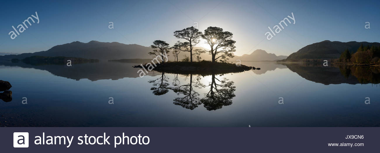 Old Scots pines by the waters of Loch Maree in the North West Highlands. - Stock Image