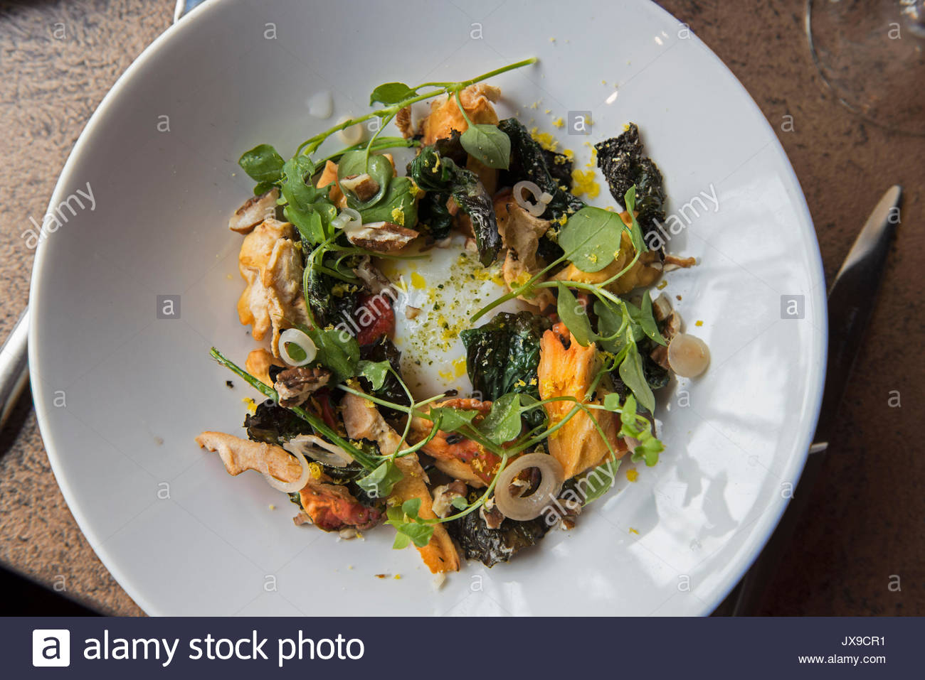 A restaurant serves a meal made with foraged ingredients. - Stock Image