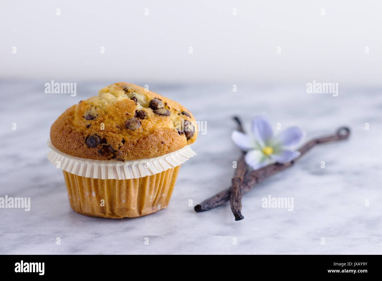 Beautiful vanilla chocolate chip muffin on marble surface with two vanilla pods - Stock Image