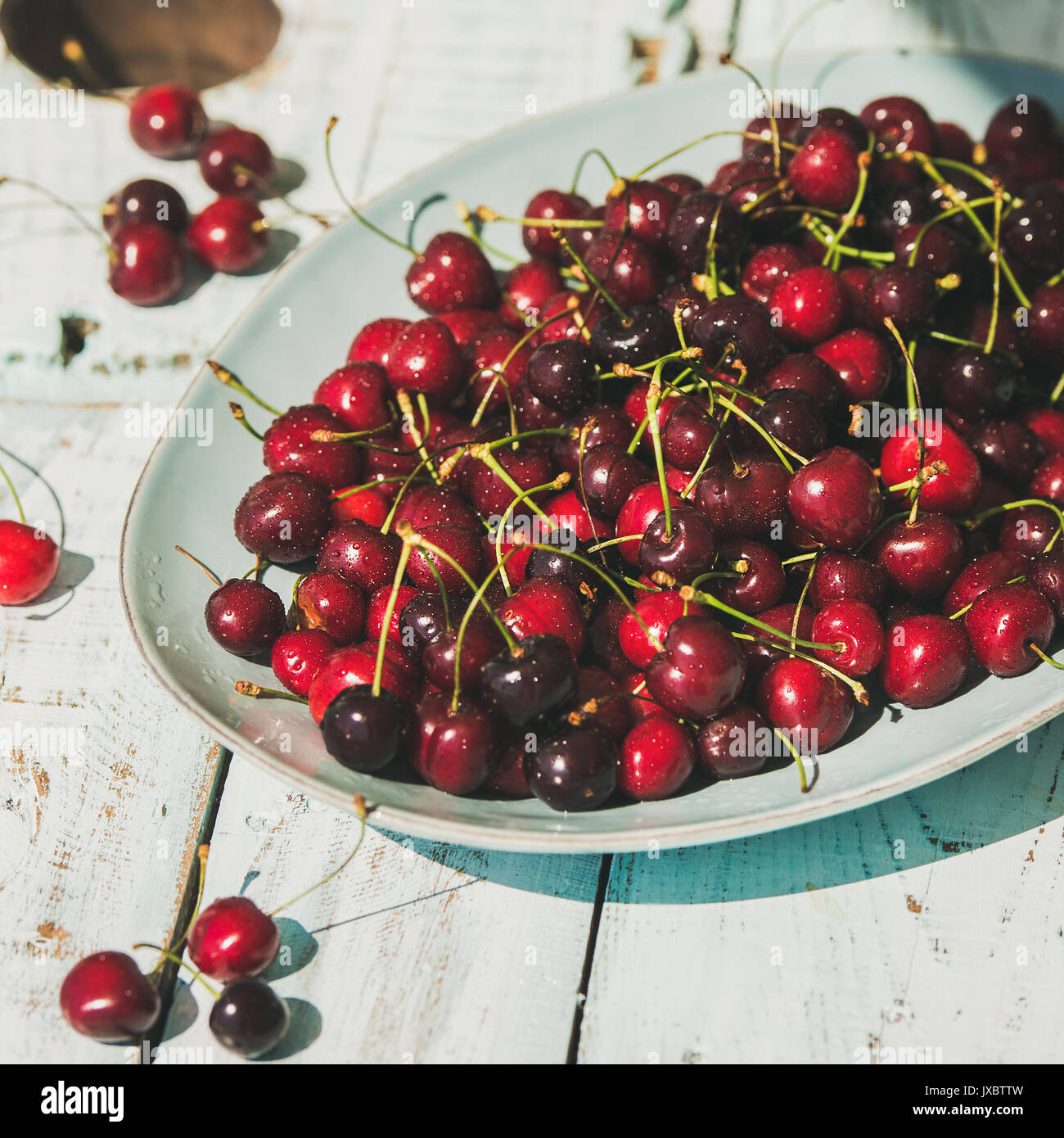Fresh ripe sweet cherries in plate on rustic light blue wooden garden table, selective focus, square crop. Summer food concept - Stock Image