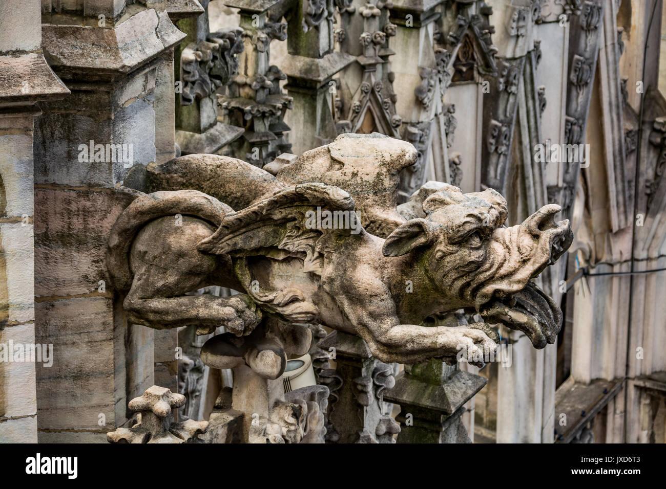 Architectural detail - gargoyle of the Milan Cathedral - Duomo di Milano, Italy - Stock Image