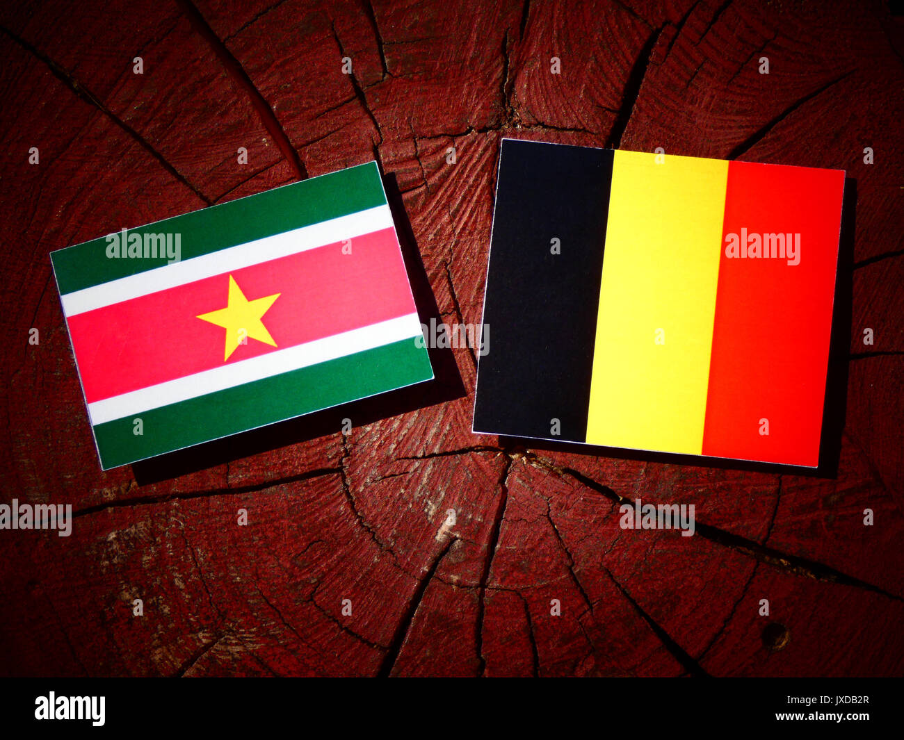 Suriname flag with Belgian flag on a tree stump isolated - Stock Image