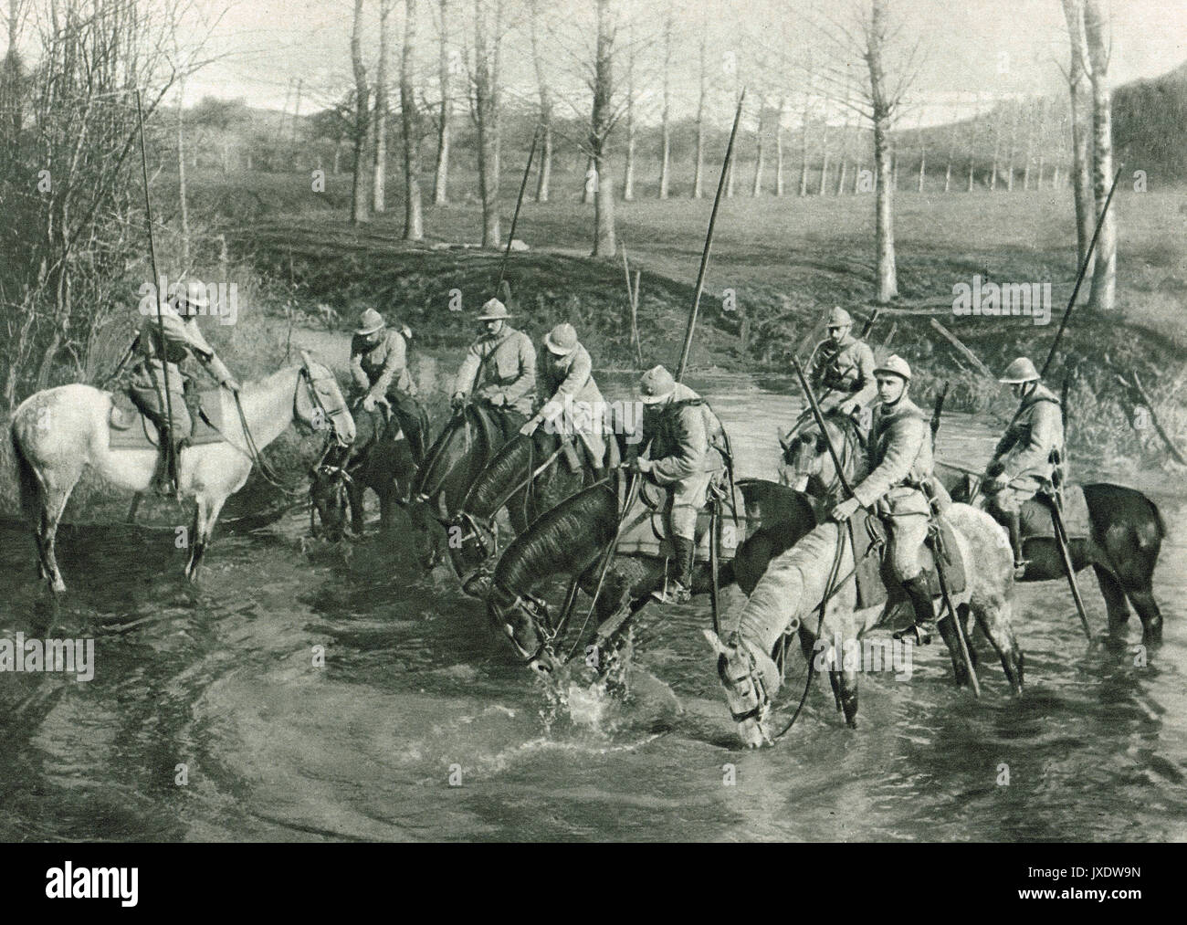 French cavalry watering horses, WW1 - Stock Image
