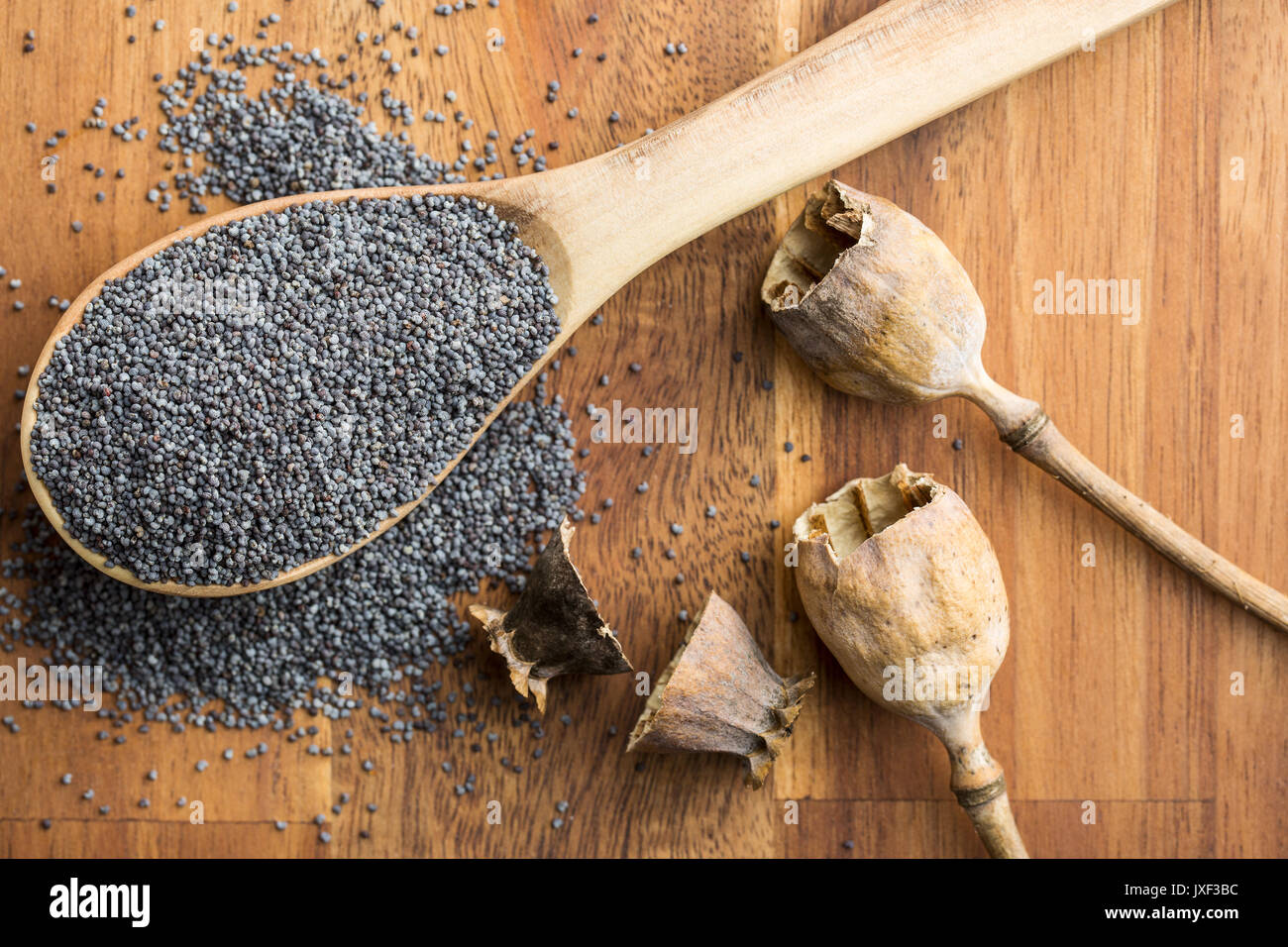 Dried poppy heads and seeds. Blue poppy. Top view. - Stock Image