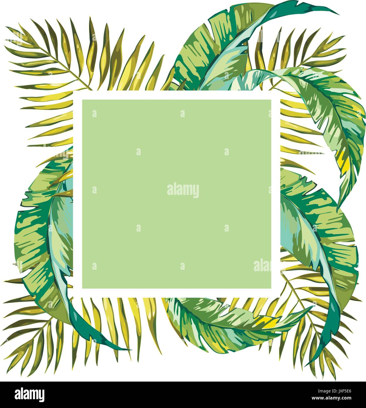 Summer Tropical Background With Palm Tree Leaves And Exotic Plants Stock Vector Image Art Alamy Pngtree offers hd tropical background images for free download. https www alamy com summer tropical background with palm tree leaves and exotic plants image153997598 html